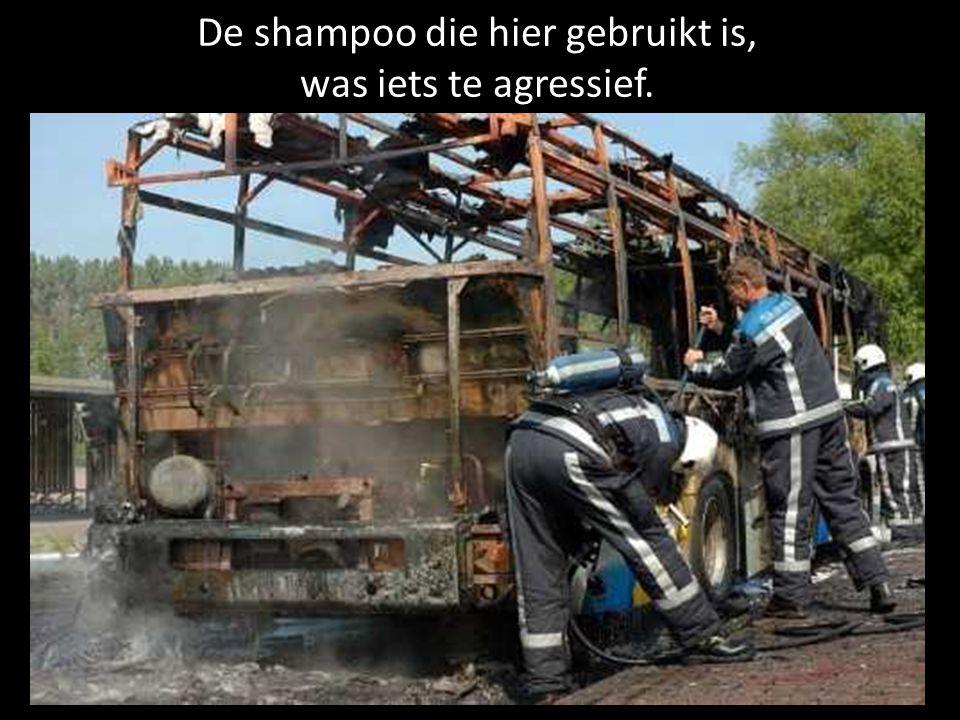 De shampoo die hier gebruikt is, was iets te agressief.