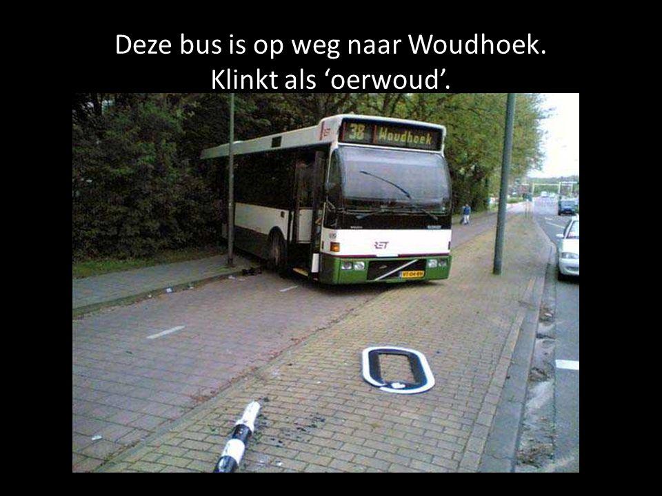Deze bus is op weg naar Woudhoek. Klinkt als 'oerwoud'.