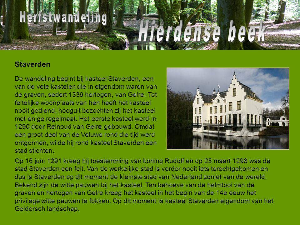 Op 16 juni 1291 kreeg hij toestemming van koning Rudolf en op 25 maart 1298 was de stad Staverden een feit. Van de werkelijke stad is verder nooit iet