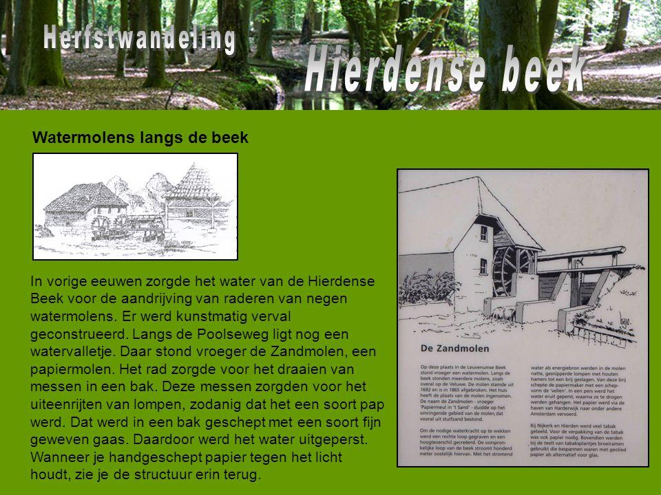 In vorige eeuwen zorgde het water van de Hierdense Beek voor de aandrijving van raderen van negen watermolens. Er werd kunstmatig verval geconstrueerd