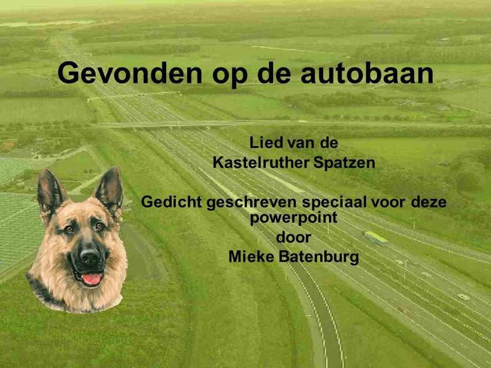 Gevonden op de autobaan Lied van de Kastelruther Spatzen Gedicht geschreven speciaal voor deze powerpoint door Mieke Batenburg