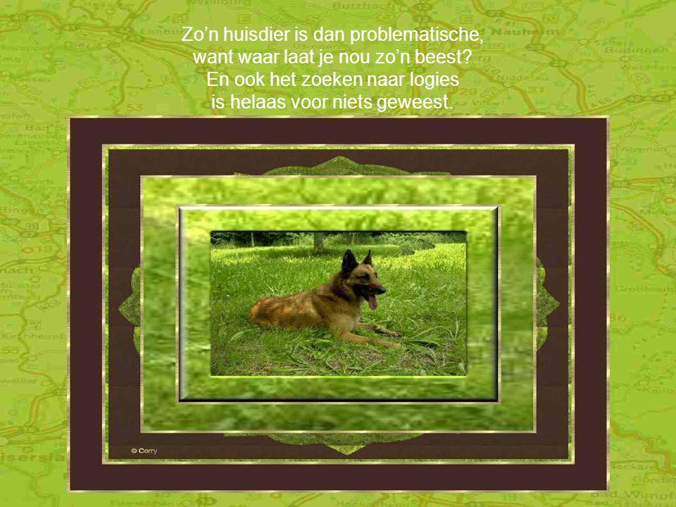 Met mensen die voor het hondje zorgen, voor een redelijke prijs 't Moet wel geregeld zijn vóór morgen want dan gaan wij op reis.'