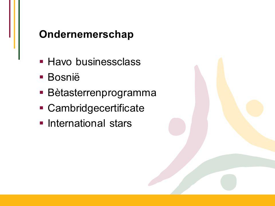 Ondernemerschap  Havo businessclass  Bosnië  Bètasterrenprogramma  Cambridgecertificate  International stars