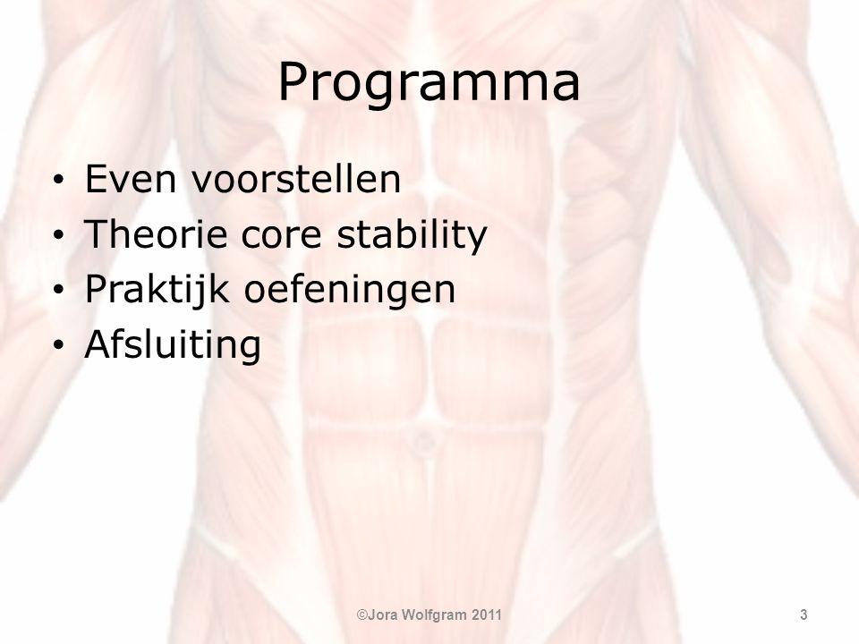 Programma • Even voorstellen • Theorie core stability • Praktijk oefeningen • Afsluiting ©Jora Wolfgram 20113