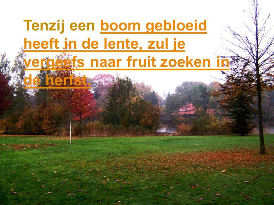 Tenzij een boom gebloeid heeft in de lente, zul je vergeefs naar fruit zoeken in de herfst.