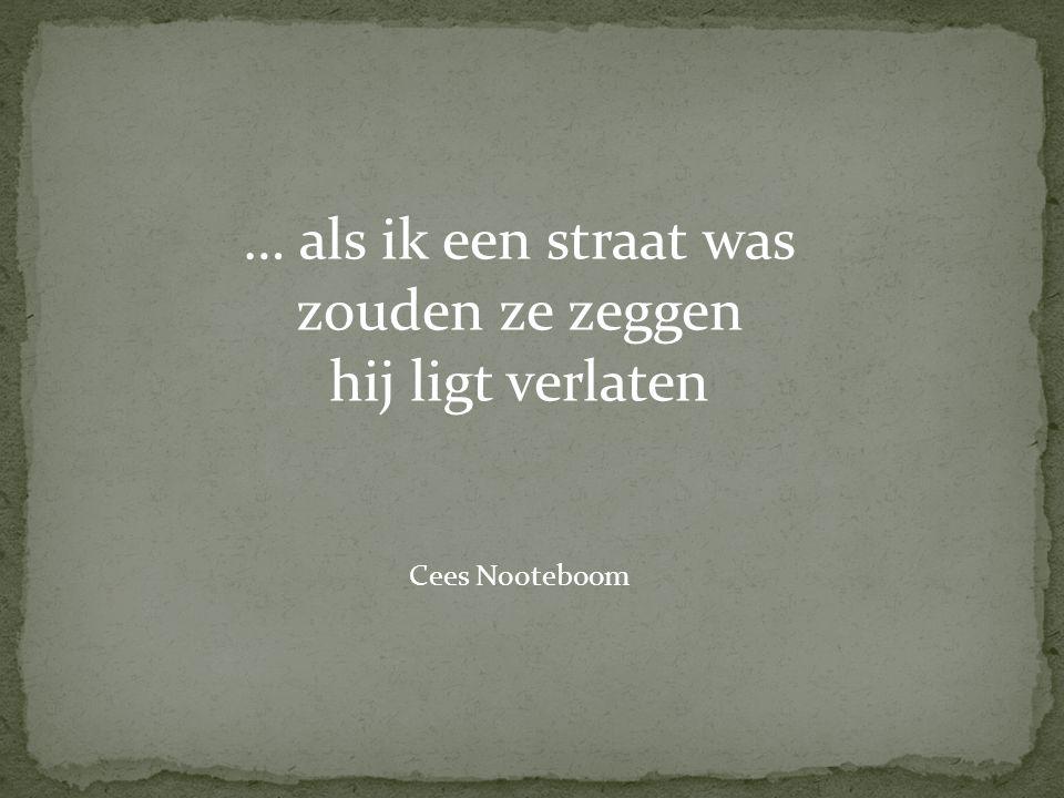  artikel: de Jong-Gierveld, J.(2006).