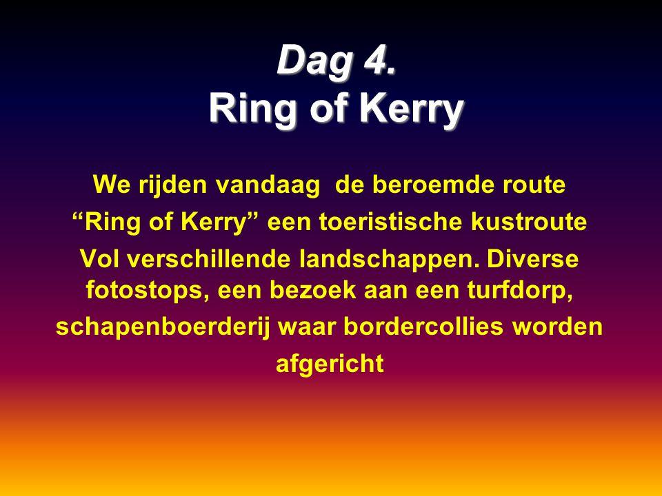 """Dag 4. Ring of Kerry We rijden vandaag de beroemde route """"Ring of Kerry"""" een toeristische kustroute Vol verschillende landschappen. Diverse fotostops,"""