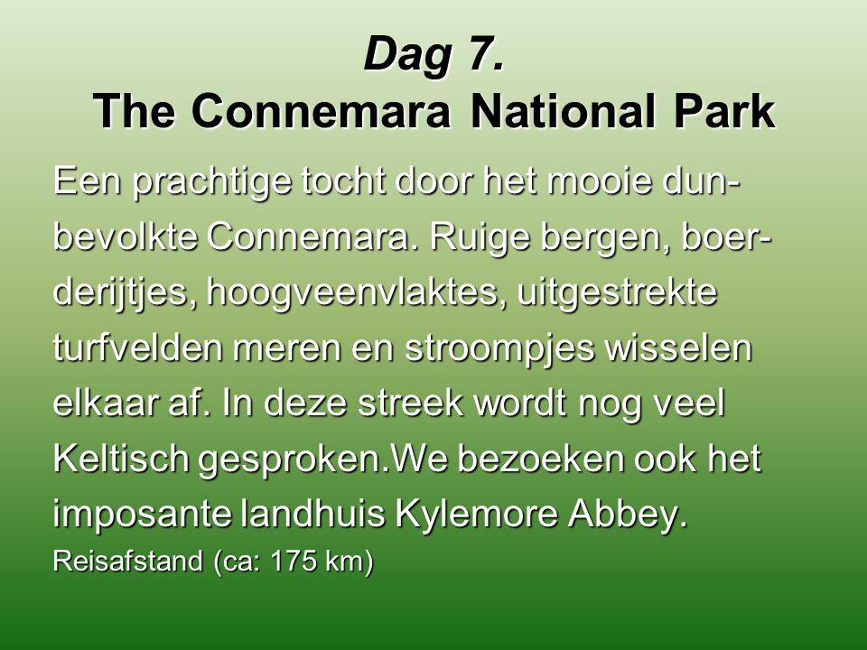 Dag 7. The Connemara National Park Een prachtige tocht door het mooie dun- bevolkte Connemara. Ruige bergen, boer- derijtjes, hoogveenvlaktes, uitgest
