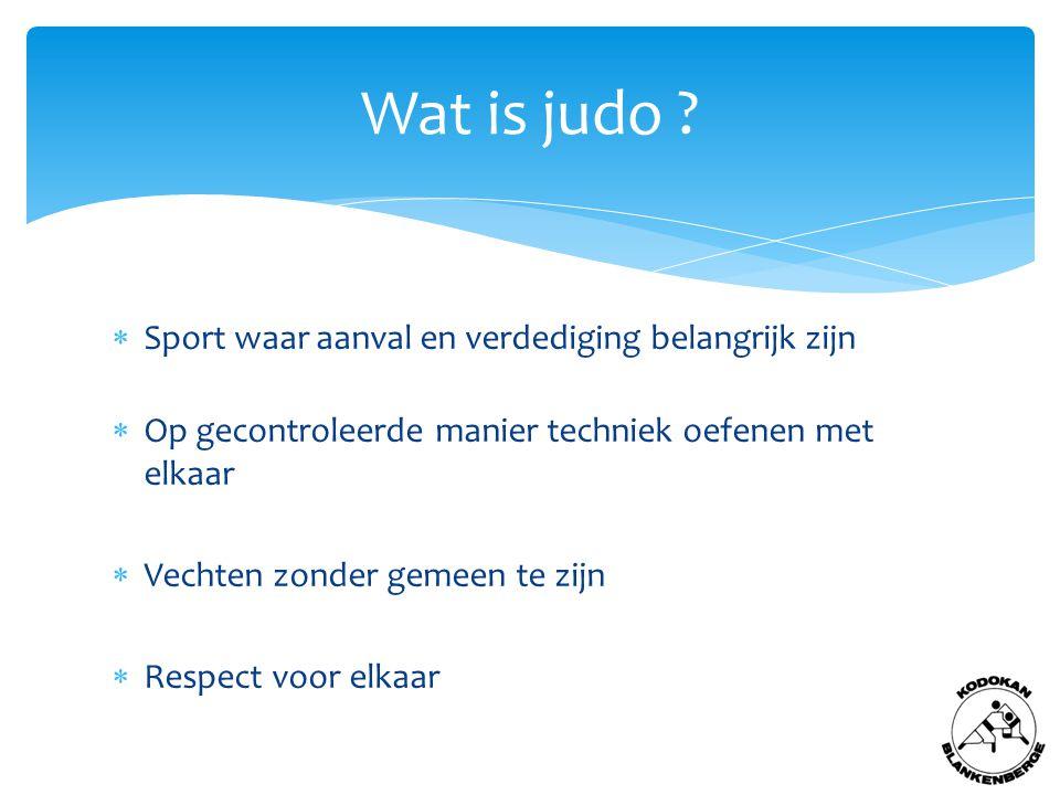 Wat is judo .