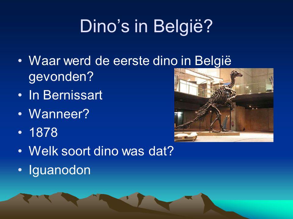 Dino's in België? •Waar werd de eerste dino in België gevonden? •In Bernissart •Wanneer? •1878 •Welk soort dino was dat? •Iguanodon