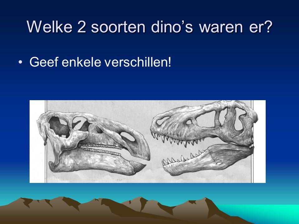 Welke 2 soorten dino's waren er? •Geef enkele verschillen!