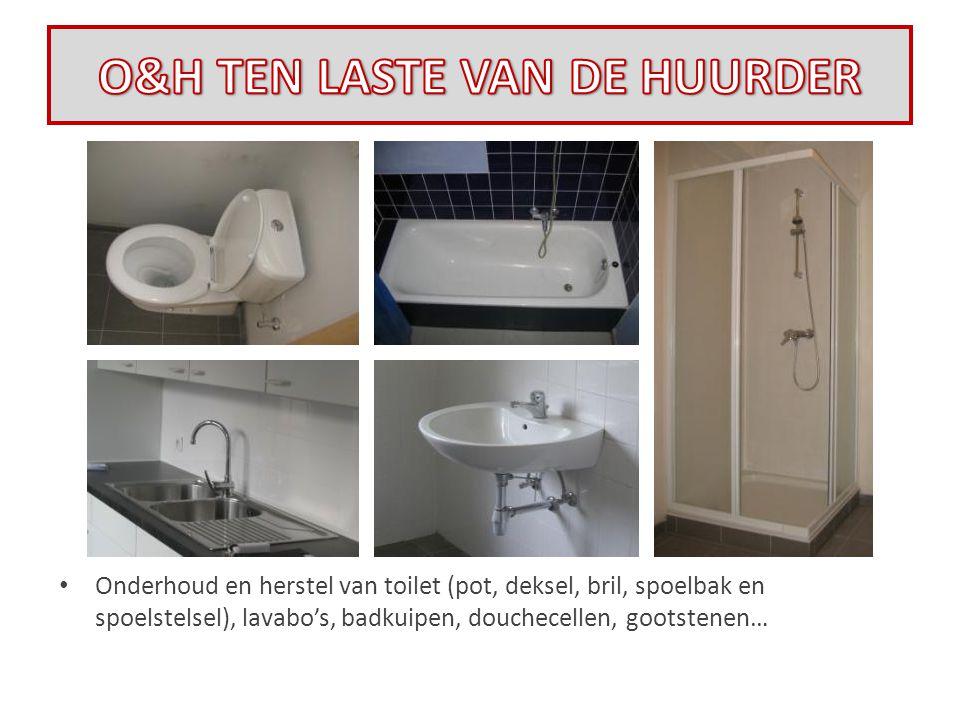 • Onderhoud en herstel van toilet (pot, deksel, bril, spoelbak en spoelstelsel), lavabo's, badkuipen, douchecellen, gootstenen…