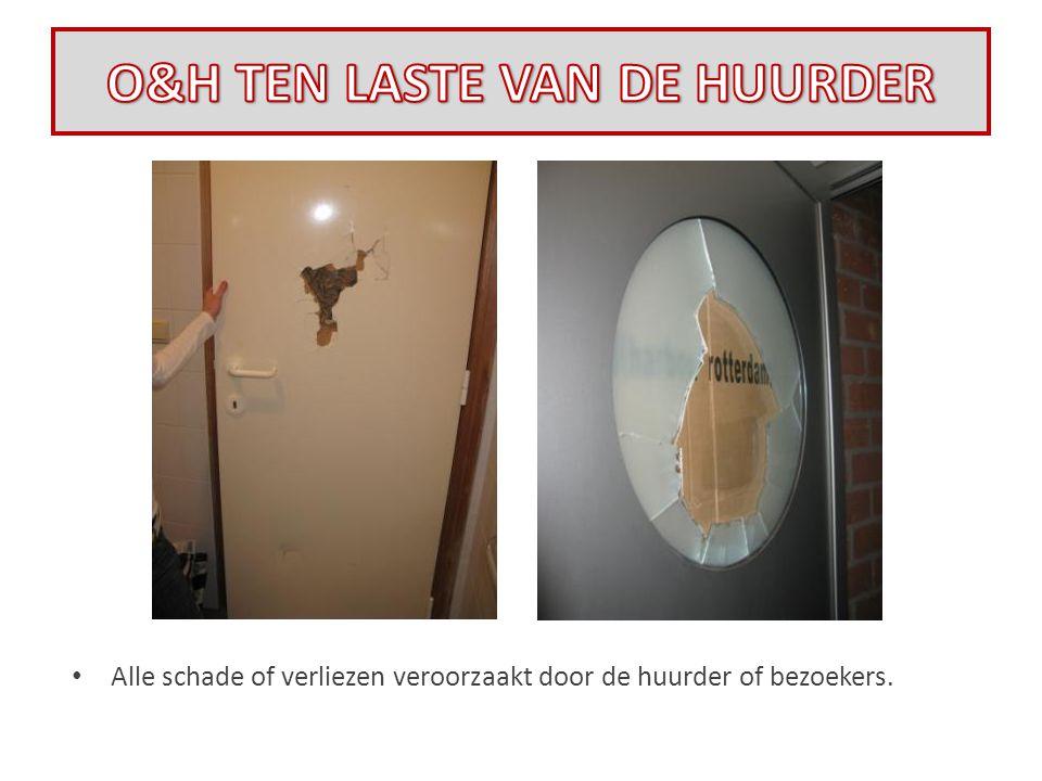 • Alle schade of verliezen veroorzaakt door de huurder of bezoekers.