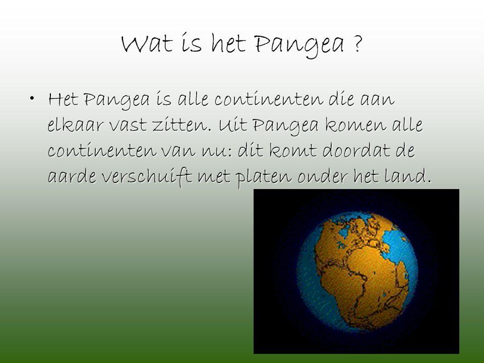 Wat is het Pangea ? •Het Pangea is alle continenten die aan elkaar vast zitten. Uit Pangea komen alle continenten van nu: dit komt doordat de aarde ve