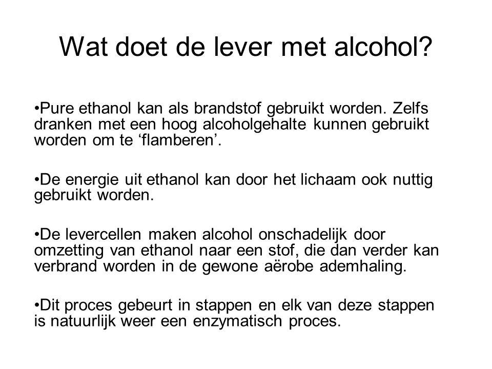 Wat doet de lever met alcohol? •Pure ethanol kan als brandstof gebruikt worden. Zelfs dranken met een hoog alcoholgehalte kunnen gebruikt worden om te