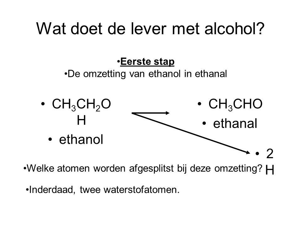 Wat doet de lever met alcohol? •CH 3 CHO •ethanal •Welke atomen worden afgesplitst bij deze omzetting? •Inderdaad, twee waterstofatomen. •CH 3 CH 2 O
