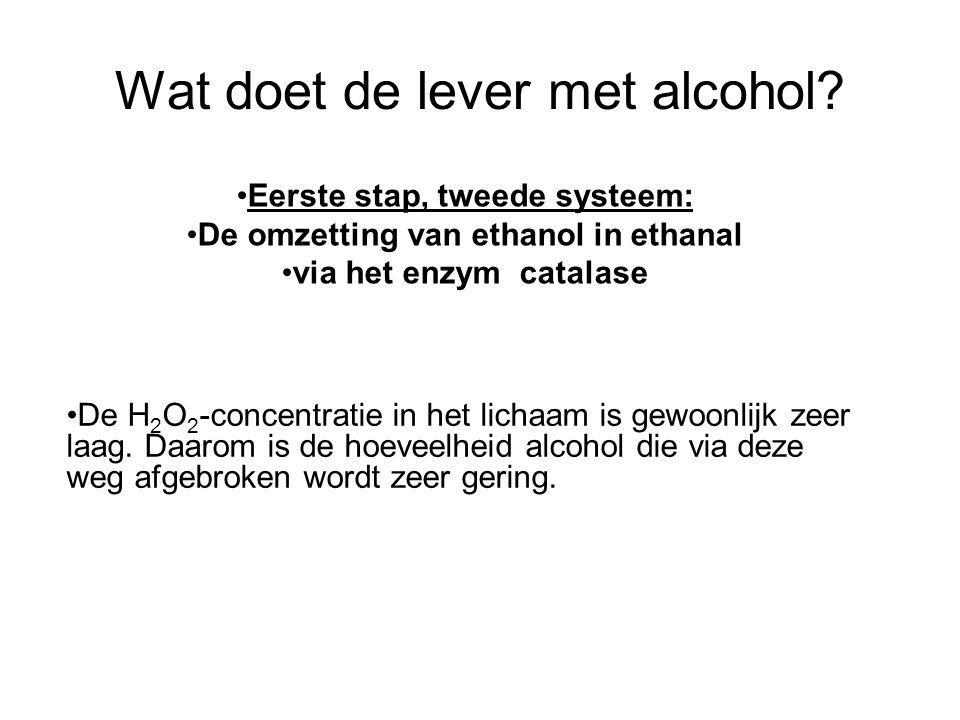 Wat doet de lever met alcohol? •De H 2 O 2 -concentratie in het lichaam is gewoonlijk zeer laag. Daarom is de hoeveelheid alcohol die via deze weg afg