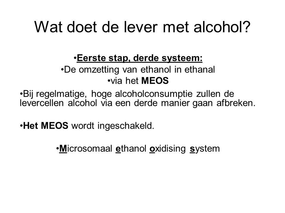 Wat doet de lever met alcohol? •Bij regelmatige, hoge alcoholconsumptie zullen de levercellen alcohol via een derde manier gaan afbreken. •Het MEOS wo