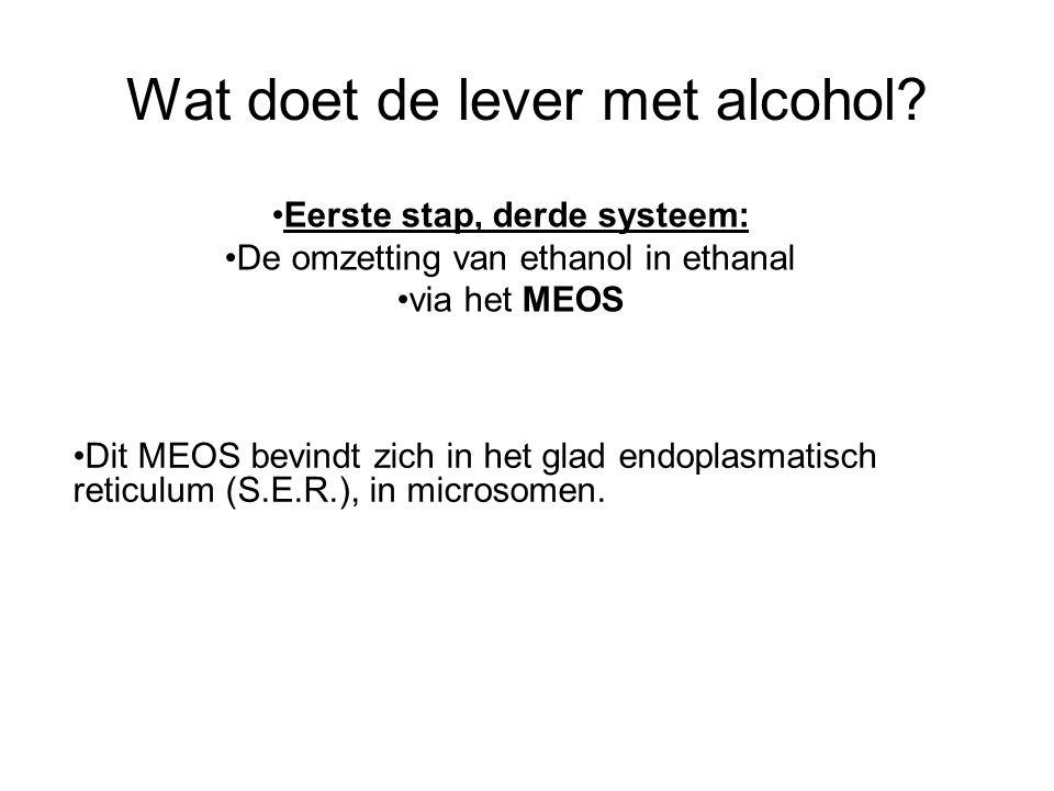 Wat doet de lever met alcohol? •Dit MEOS bevindt zich in het glad endoplasmatisch reticulum (S.E.R.), in microsomen. •Eerste stap, derde systeem: •De