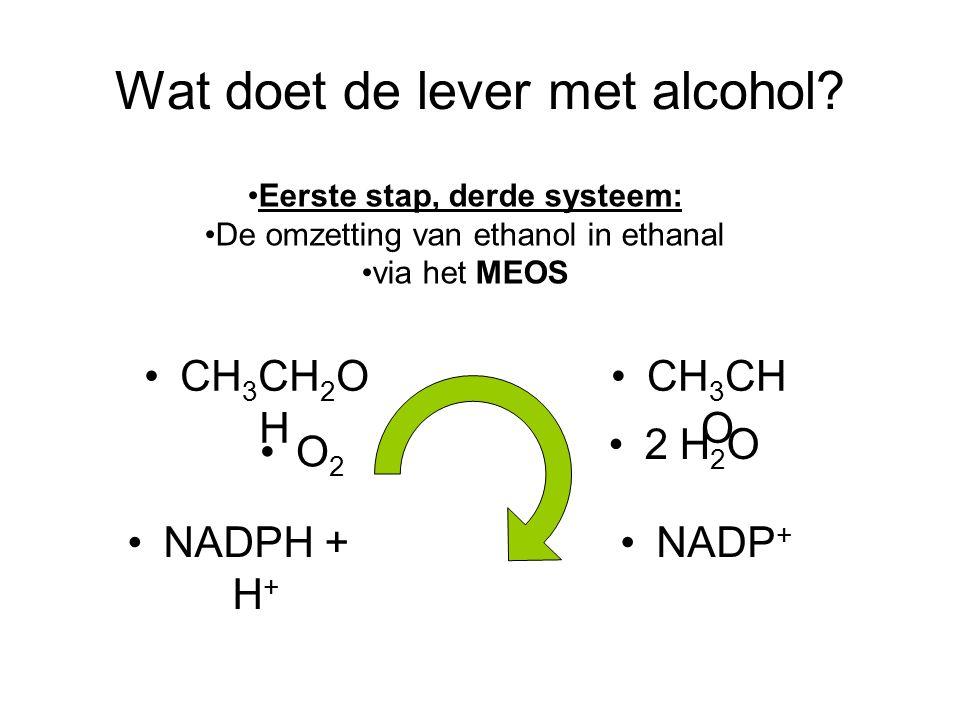 Wat doet de lever met alcohol? •Eerste stap, derde systeem: •De omzetting van ethanol in ethanal •via het MEOS •2 H 2 O •O2•O2 •CH 3 CH O •CH 3 CH 2 O