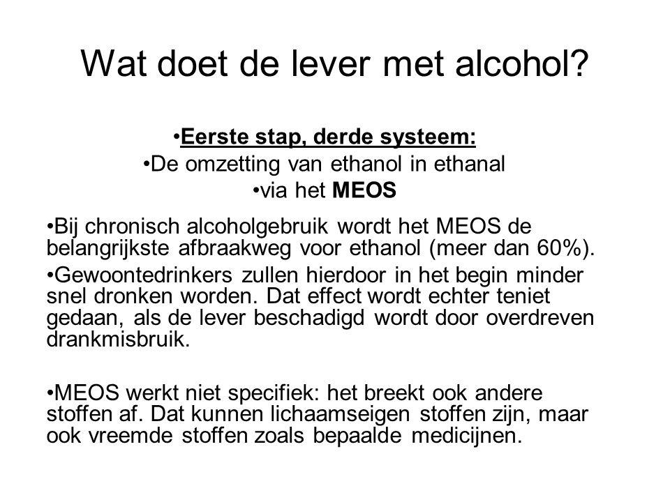 Wat doet de lever met alcohol? •Bij chronisch alcoholgebruik wordt het MEOS de belangrijkste afbraakweg voor ethanol (meer dan 60%). •Gewoontedrinkers