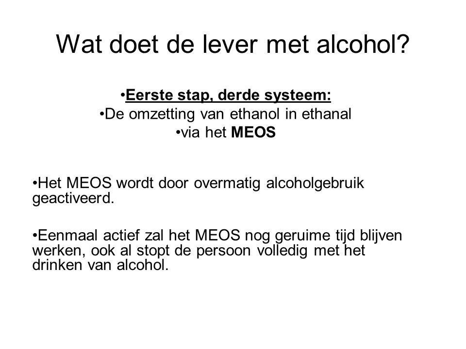 Wat doet de lever met alcohol? •Het MEOS wordt door overmatig alcoholgebruik geactiveerd. •Eenmaal actief zal het MEOS nog geruime tijd blijven werken