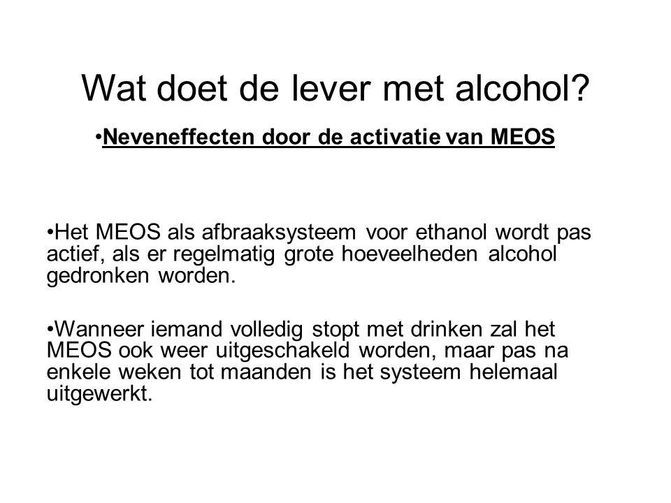 Wat doet de lever met alcohol? •Neveneffecten door de activatie van MEOS •Het MEOS als afbraaksysteem voor ethanol wordt pas actief, als er regelmatig
