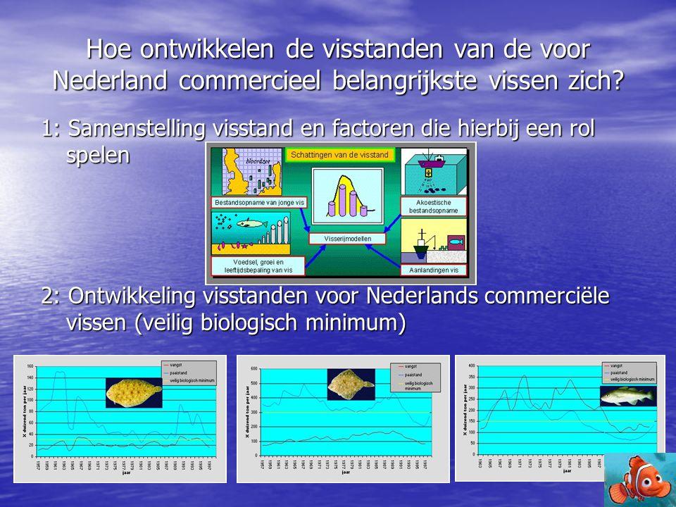 Hoe ontwikkelen de visstanden van de voor Nederland commercieel belangrijkste vissen zich? 1: Samenstelling visstand en factoren die hierbij een rol s