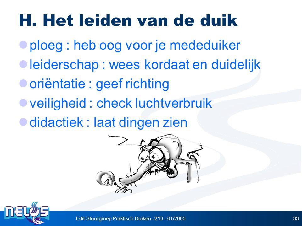 Edit-Stuurgroep Praktisch Duiken - 2*D - 01/200533 H.