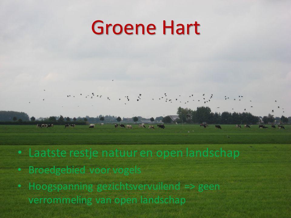 Groene Hart • Laatste restje natuur en open landschap • Broedgebied voor vogels • Hoogspanning gezichtsvervuilend => geen verrommeling van open landsc