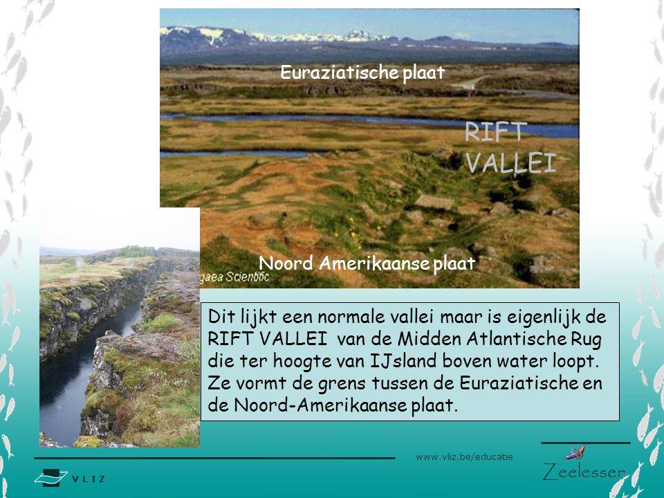V L I Z www.vliz.be/educatie Zeelessen Noord Amerikaanse plaat Euraziatische plaat RIFT VALLEI Dit lijkt een normale vallei maar is eigenlijk de RIFT