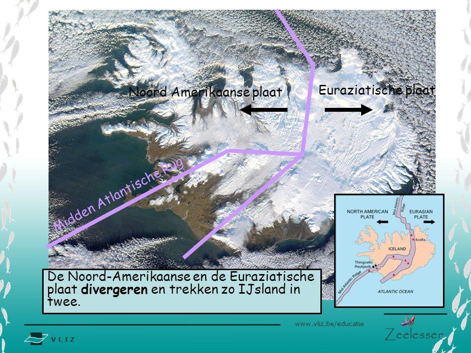 V L I Z www.vliz.be/educatie Zeelessen Midden Atlantische Rug Noord Amerikaanse plaat Euraziatische plaat De Noord-Amerikaanse en de Euraziatische pla