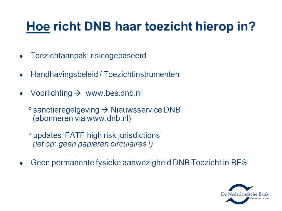 Hoe richt DNB haar toezicht hierop in?  Toezichtaanpak: risicogebaseerd  Handhavingsbeleid / Toezichtinstrumenten  Voorlichting  www.bes.dnb.nl 