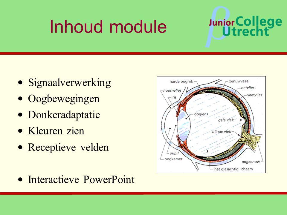 β Inhoud module • Signaalverwerking • Oogbewegingen • Donkeradaptatie • Kleuren zien • Receptieve velden • Interactieve PowerPoint