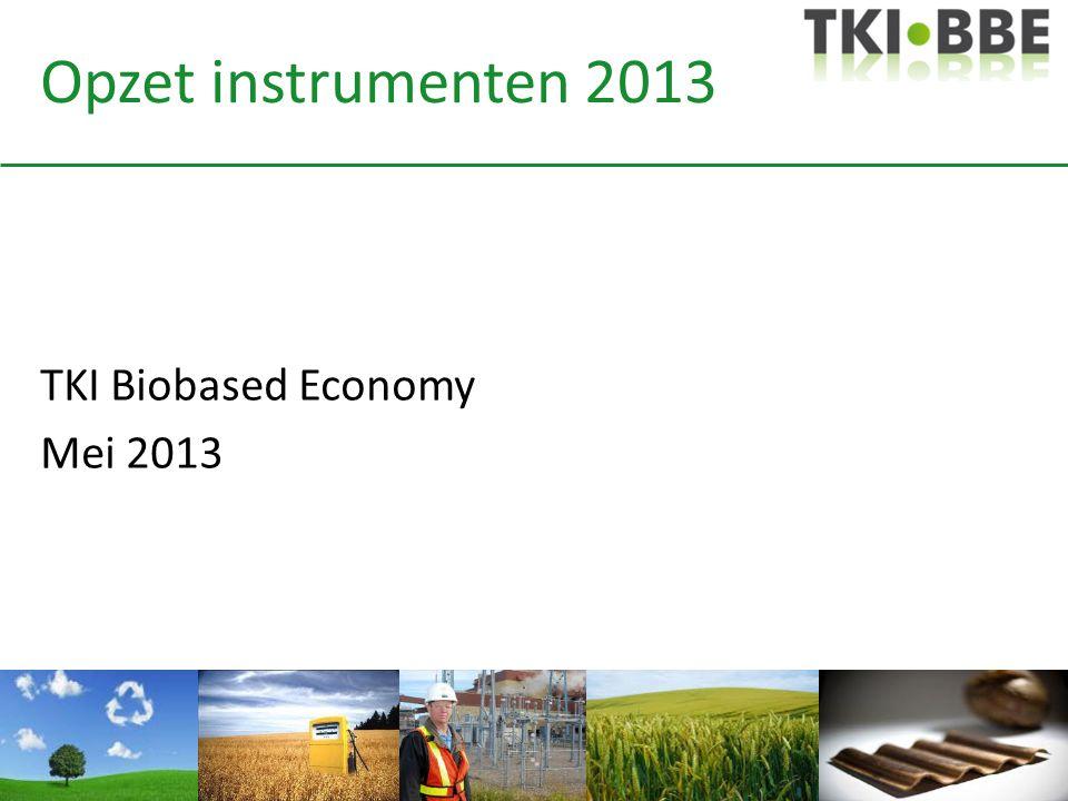 Opzet instrumenten 2013 TKI Biobased Economy Mei 2013