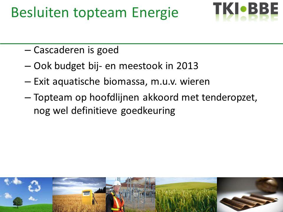 Besluiten topteam Energie – Cascaderen is goed – Ook budget bij- en meestook in 2013 – Exit aquatische biomassa, m.u.v. wieren – Topteam op hoofdlijne