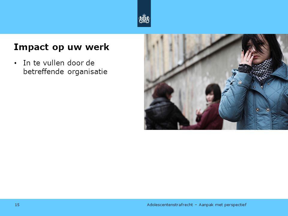 Adolescentenstrafrecht – Aanpak met perspectief Impact op uw werk • In te vullen door de betreffende organisatie 15