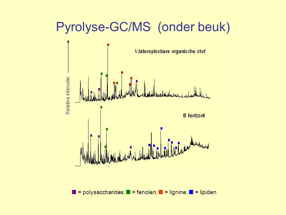 Pyrolyse-GC/MS (onder beuk) = polysaccharides; = fenolen; = lignine; = lipiden