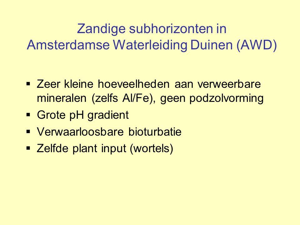 Zandige subhorizonten in Amsterdamse Waterleiding Duinen (AWD)  Zeer kleine hoeveelheden aan verweerbare mineralen (zelfs Al/Fe), geen podzolvorming