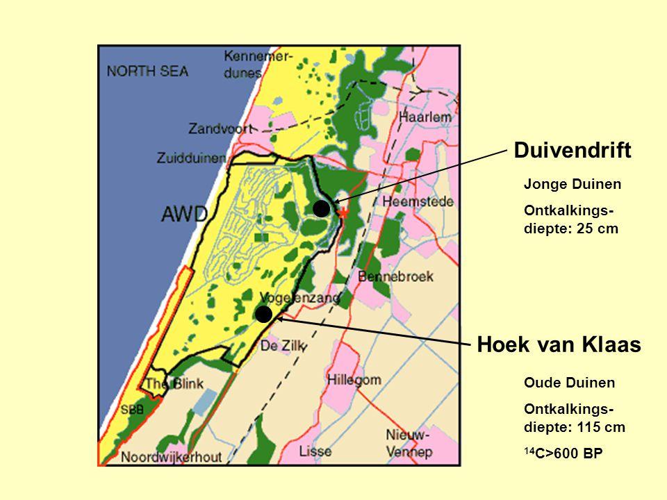 Duivendrift Hoek van Klaas Jonge Duinen Ontkalkings- diepte: 25 cm Oude Duinen Ontkalkings- diepte: 115 cm 14 C>600 BP