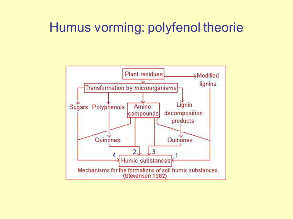 Promotieonderzoek in Wageningen Theorie podzolisatie kennen we nu wel, maar hoe zit het nu met de organische stof (chemie).