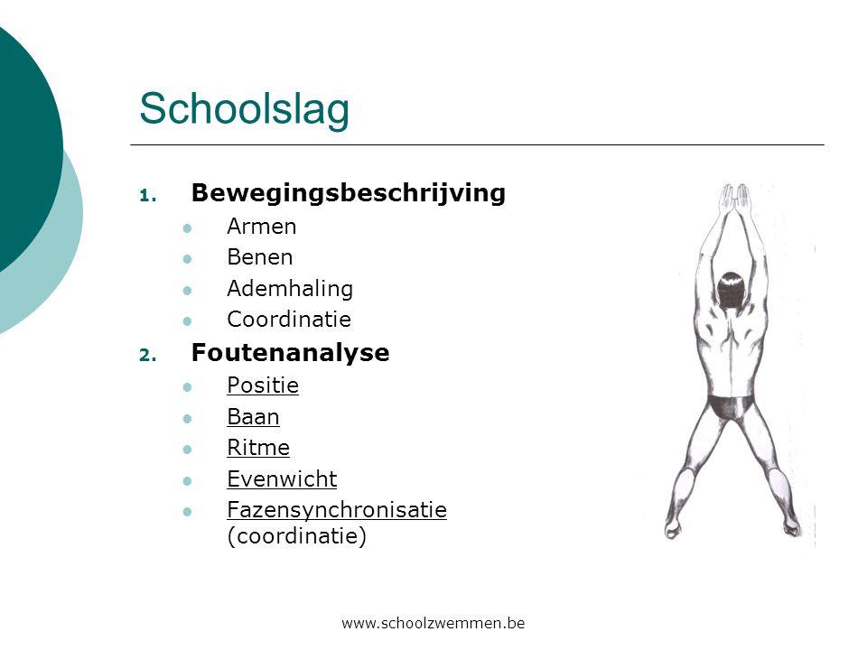 www.schoolzwemmen.be Schoolslag 1. Bewegingsbeschrijving  Armen  Benen  Ademhaling  Coordinatie 2. Foutenanalyse  Positie  Baan  Ritme  Evenwi