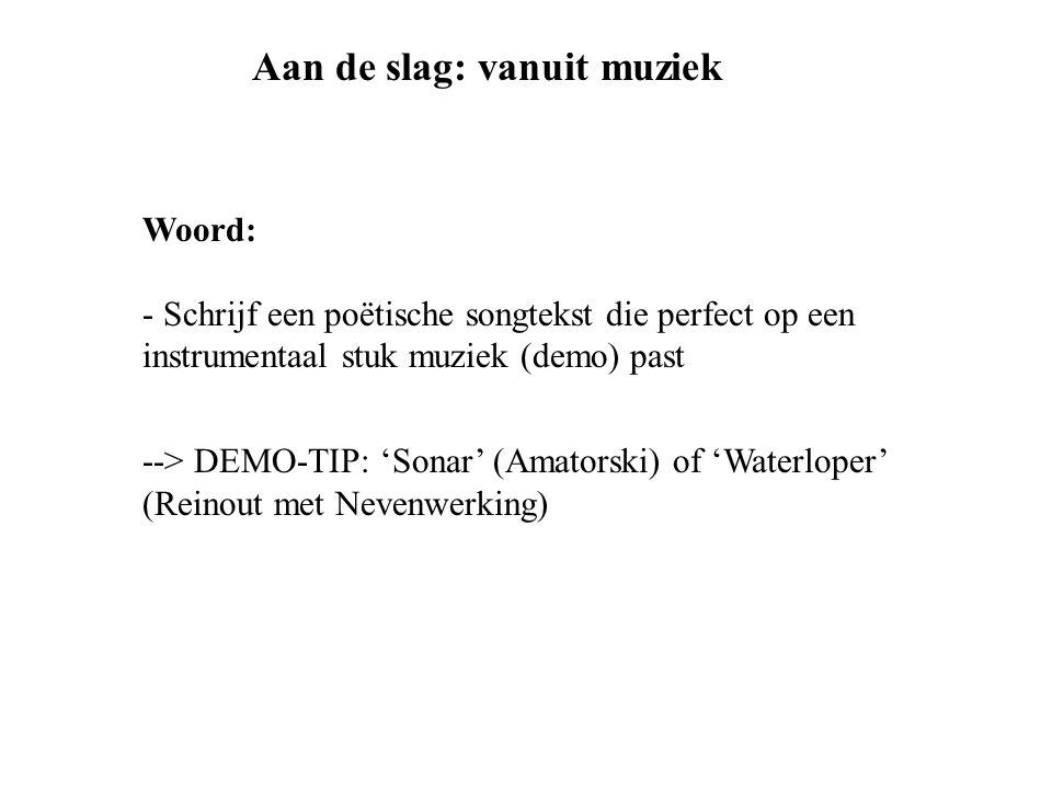Woord: - Schrijf een poëtische songtekst die perfect op een instrumentaal stuk muziek (demo) past --> DEMO-TIP: 'Sonar' (Amatorski) of 'Waterloper' (R