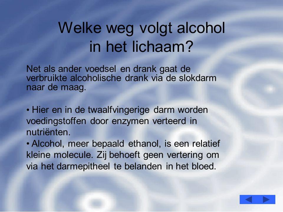 3 Welke weg volgt alcohol in het lichaam.