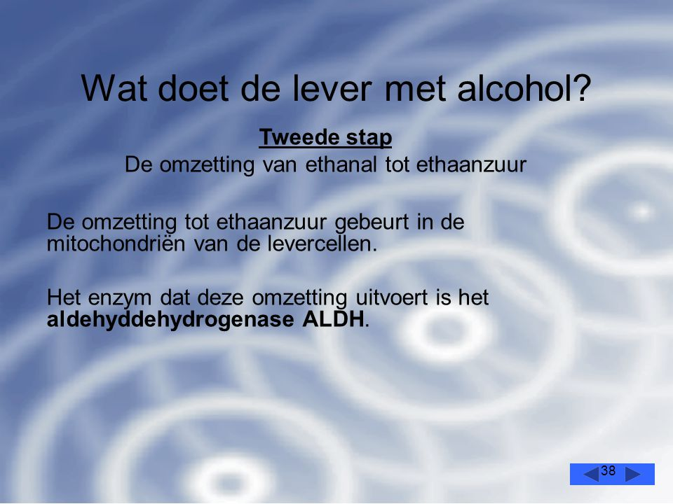38 Wat doet de lever met alcohol.