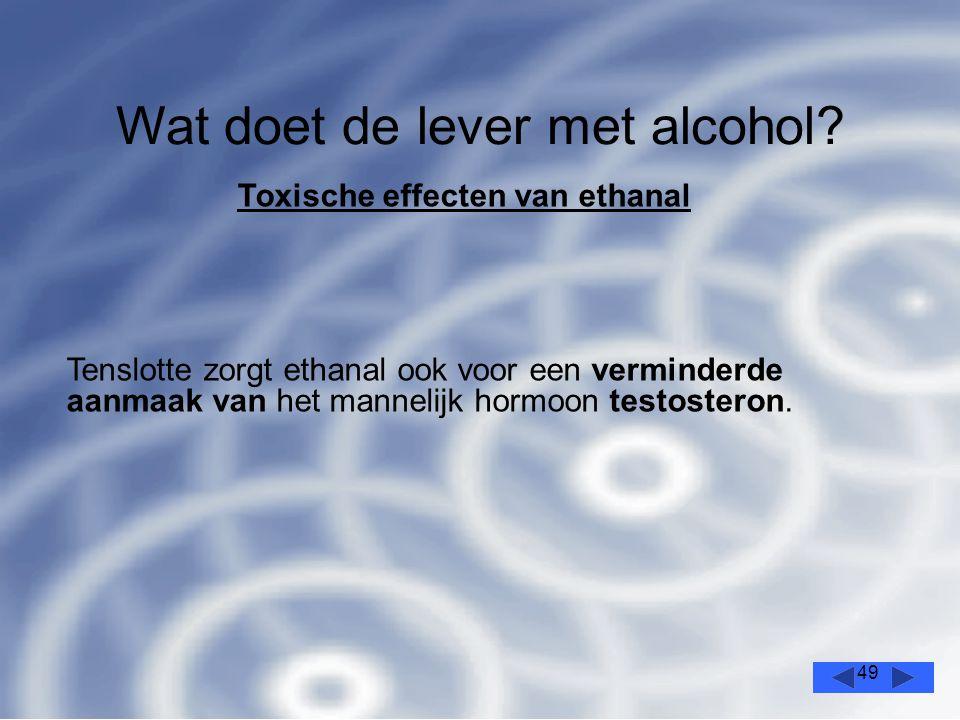 49 Wat doet de lever met alcohol.