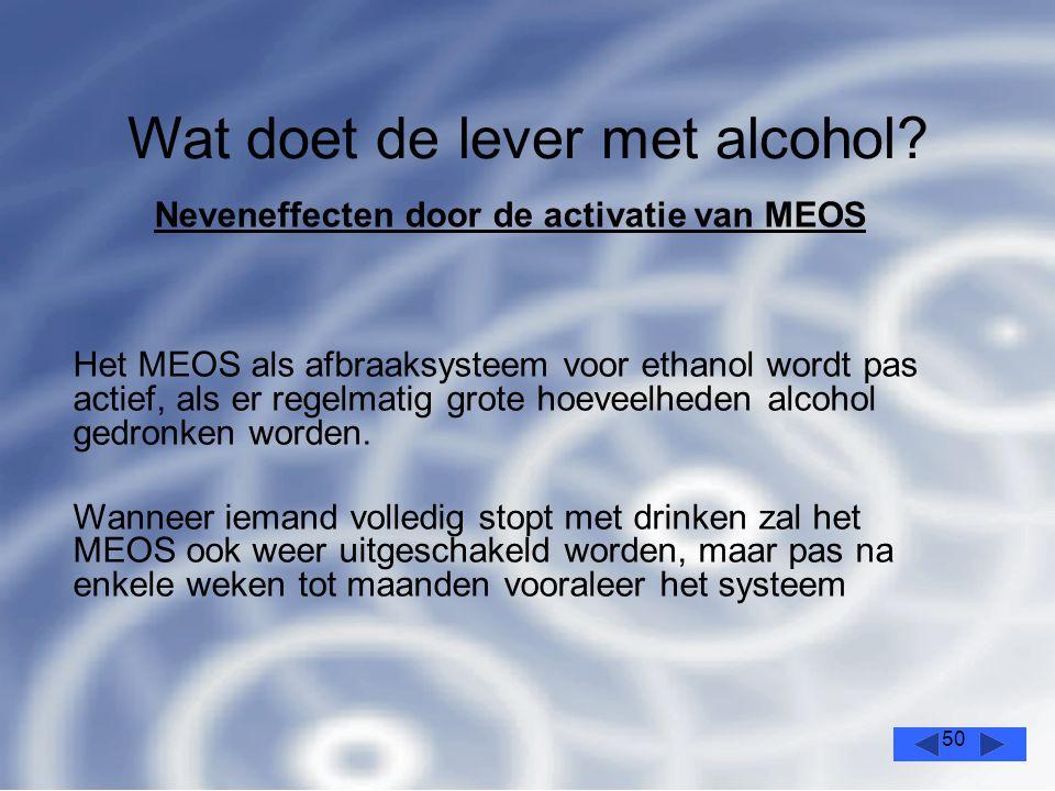 50 Wat doet de lever met alcohol.