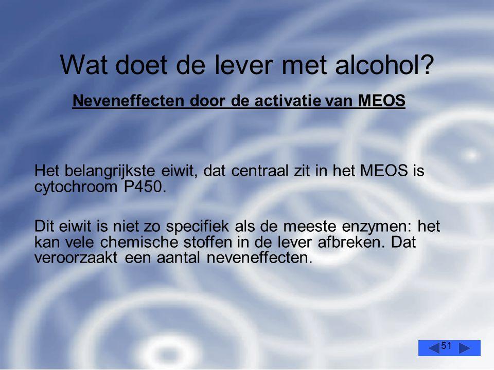 51 Wat doet de lever met alcohol.
