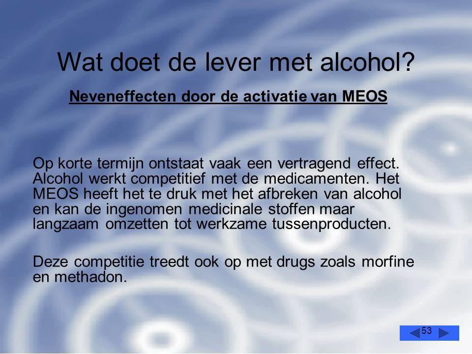 53 Wat doet de lever met alcohol.