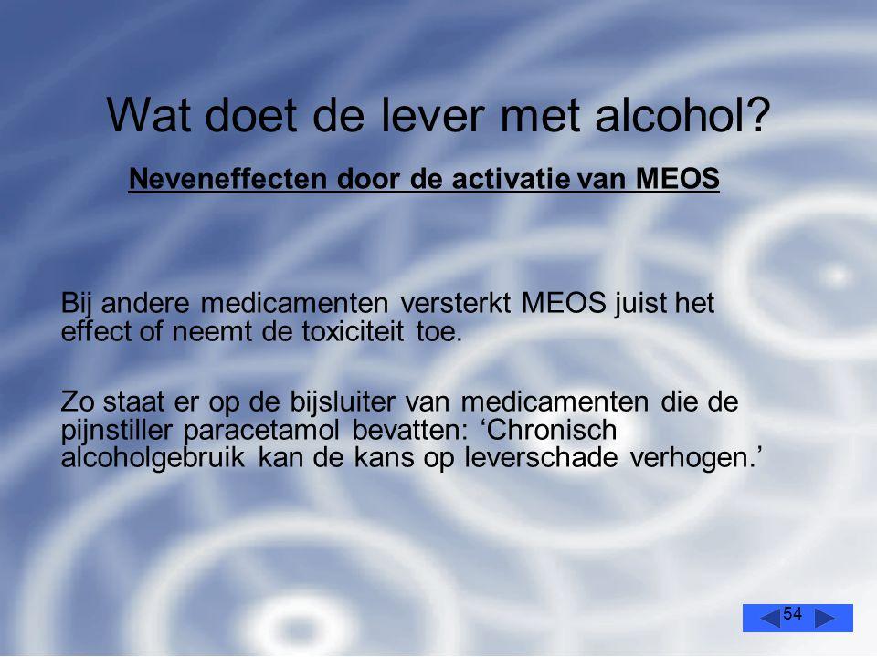54 Wat doet de lever met alcohol.